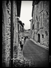 DSCF4461 (anto-logic) Tags: assisi