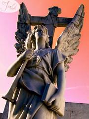 Guardián de los cielos