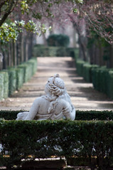 Detalles de Aranjuez