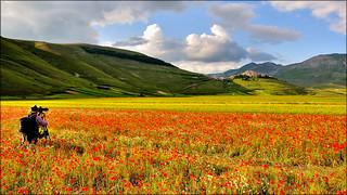 Castelluccio di Norcia -