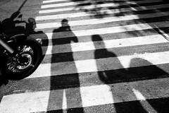 Photographer, three pedestrians and the unicorn biker (D. Kutz) Tags: life street blackandwhite bw silhouette crossing shadows stripes ukraine motorbike biker kiev kyiv киев україна улица київ украина тени силуэты