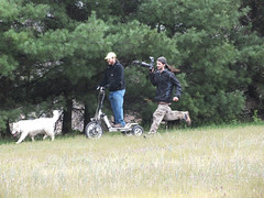 """Now The Quadcopter Pilot Is Chasing The WooFPAK & Me With A Camera, Who Is This Guy?? LOL • <a style=""""font-size:0.8em;"""" href=""""http://www.flickr.com/photos/96196263@N07/9351269451/"""" target=""""_blank"""">View on Flickr</a>"""