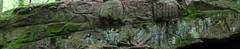 Relief Quellheiligtum (johnbrgel) Tags: relief celtic lorraine vosges moselle galloroman keltisch gallic vogesen bitche kelten lothringen bitsch gallorömisch