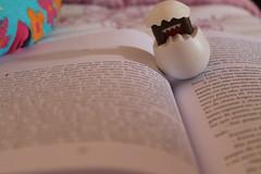 """""""Naquela noite o vento no uivou"""" (alinaharumi) Tags: cute book books page domo livro livros paginas ameninaquenosabialer"""