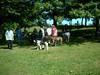GreyhoundPlanetDaySept132009034