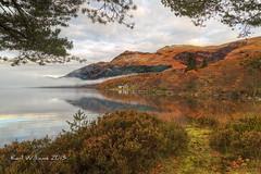 Lomond Autumn (Shuggie!!) Tags: autumn mountains reflections landscape scotland morninglight heather hills trossachs hdr lochlomond rowardennan zenfolio mistandfog vision:mountain=0502 vision:sky=0786 vision:outdoor=0829 vision:clouds=0737