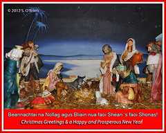 (mazurka666) Tags: christmas ireland crib nollaig countywaterford ire portlaw contaephortlirge suirvalleyphotographicgroup seobrien portllch