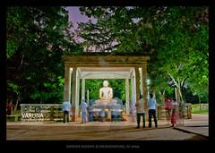 Samadhi Buddha Statue Buddha Srilanka Samadhi