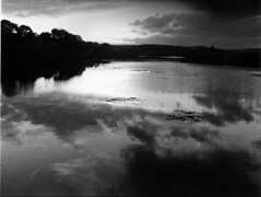 35 trix rodinal lagoon dark edit (bc50099) Tags: leica morning 35mm la early lagoon nikkor m4 jolla marshes
