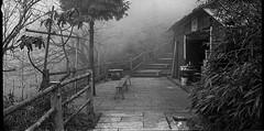 Emeishan 2013 (Vasilij Betin) Tags: trip travel people bw art film 35mm landscape blackwhite asia iso400 voigtlander grain hp5 konica emeishan ilford hexar