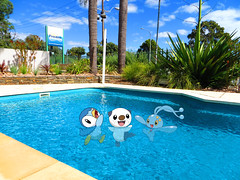 pokemon platinum how to get manaphy