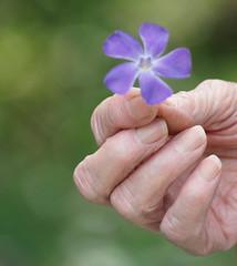 MERCI (PROFIX06) Tags: light france love church fleurs nice cross god sister amour lumiere pax eglise monastere soeur dieu croix partage priere
