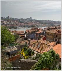 Vue sur le Douro (Christophe Hamieau) Tags: paris portugal river garden europe jardin roofs porto douro capitale pt prt fleuve toits coursdeau continentsetpays