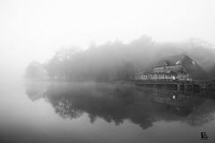 Brume & Silence (II) (FgKs By DelocK OFF/ON) Tags: bw lake fog landscape blackwhite noiretblanc lac bretagne nb reflet reflexion morbihan brouillard brume waterscape britany rochefortenterre claudedelock filmographikestudio fgks claudedelockphotographie