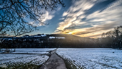 HDR Sunset (Ukelens) Tags: trees light shadow tree forest canon lights schweiz switzerland licht shadows swiss waters bern lightshow wald bume schatten baum forests hdr lighteffects lichter lightroom lighteffect lichteffekte lichteffekt wlder hdrphotography elfenau ukelens