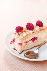 Delicious raspberry sponge cake (..Melicious..) Tags: pink red food brown white reflection texture fruits cake vertical closeup fruit pie crust stuffing table dessert photography cuisine beige strawberry berry focus candy shot sweet sauce eating object side small group decoration cream culture objects tasty plate nobody spoon ukraine row gourmet delicious pastry raspberry sponge tart curds gateaux filling freshness foreground crumb dishware selectivefocus readytoeat