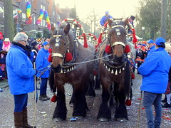 Carnaval in Keiebijtersstad 2015 (Odddutch) Tags: feest horse beer bavaria carnaval bier paarden