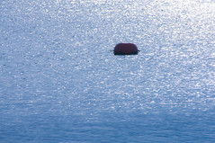 Floater (TPorter2006) Tags: lake oklahoma water may nautical murray navigation buoy 2016 lakemurray buoyant tporter2006