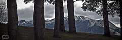 Tras los rboles/ Behind the trees (Jose Antonio. 62) Tags: trees espaa naturaleza mountains nature beautiful clouds photography spain colours arboles asturias nubes oviedo montaas