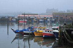 Misty Harbour (Macca6691) Tags: sea seagulls mist seascape nature misty fog landscape landscapes seaside harbour outdoor seagull foggy seawall northsea scarborough seafront fishingboats fishingboat southbay northyorkshire harbourside hispaniola seabirds grandhotel oliversmount seafret pleasureboats southcliff