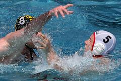 94_R.Varadi_R.Varadi (Robi33) Tags: summer men sports water swimming ball fight action basel swimmingpool watersports waterpolo sportspool waterpolochampionship