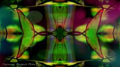 (ojoadicto) Tags: abstract mirror pattern digitalart espejo abstracto patron digitalmanipulation artisticphotography