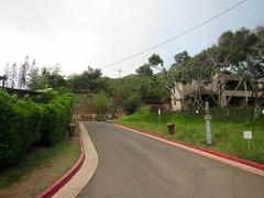 Picture from the Pillbox Trail (Dobbs77) Tags: hawaii oahu kailua lanikai pillboxtrail