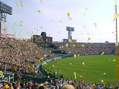 P1030539 (Nog-Z) Tags: stadium tigers hanshin hyogo koshien