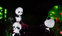 _DSC9745_2 (Elii D.) Tags: light fish flower animal night zoo monkey neon dragons lantern lampion dargon