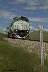 Prairie Iron (Trevor Sokolan) Tags: railroad train post rail railway trains sk prairie saskatchewan prairies cpr railfan boiler trainspotting whistle alco mlw railfanning greatwestern m420 m420w