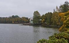 Elintarhanlahti (ri Sa) Tags: autumn trees sea plants building fall water finland helsinki cloudy elintarhanlahti kaisaniemi