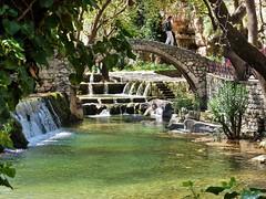 (elen.deli94) Tags: bridge trees green water flora livadeia  littlewaterfall