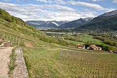 La valle de l'Arve (Chemose) Tags: mountain alps montagne alpes canon landscape eos vineyard spring vine valley 7d april paysage vignoble avril printemps hdr vigne panarama arve hautesavoie valle ayse cluses faucigny