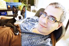 Bully and Mandy (lezumbalaberenjena) Tags: dog chien boston perro terrier bully chiot 2014