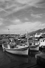 Barche a Camogli (Massimo Caccia) Tags: mare liguria barche porto camogli