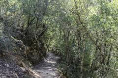 1304162587 (jolucasmar) Tags: viaje primavera andaluca paisaje contraste ros mirador curso puestasdesol cazorla montaas cuevas bosques composicion panormica viajefotof