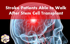 Stroke patients able to walk again after stem cell transplant (HopeGirl587) Tags: stem walk cell stroke patients transplant