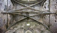 Corcomroe Abbey, Co. Clare. 4 (Michael Foley Photography) Tags: ireland abbey coclare corconroe