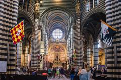Siena - Cathedral Nave Looking East to High Altar (Le Monde1) Tags: city horses italy nikon cathedral unesco worldheritagesite nave rivers tuscany siena stmary elsa palio pilgrims piazzadelduomo highaltar d610 arbia santamariaassunta merse viafrancigena lemonde1