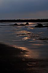 DSC_0007 Shadow of the sun (tsuping.liu) Tags: outdoor ocean sea sunset beach refrection lighting landscape water shore seasid seaside coast serene sky dusk sand