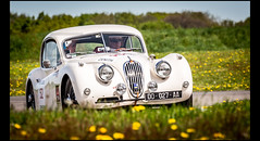 Jaguar XK 140 Coup (1957) (Laurent DUCHENE) Tags: jaguar coup 140 xk 2016 tourauto peterauto circuitdebresse