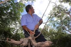 PB – Cassava Genome Hub 2
