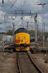 30-04-2016 on rear 37405 TNT 37419 Carl Haviland @ Ely (steveporrett) Tags: carl norwich ely greater express railtour tnt each the haviland 37405 37419 abellio anglias 1g02 30042016