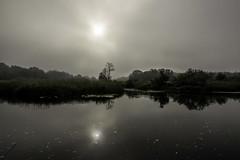 """Expectation"" (olevikshaaland) Tags: morning reflection nature fog sunrise river landscape nikon estonia outdoor pirita d810"