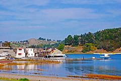 DSC_6754 - Copy (digifotovet) Tags: california houseboat sausalito