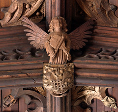 Shrewsbury, Shropshire, St. Mary the Virgin, angel playing a rebec (groenling) Tags: wood uk greatbritain roof england angel shropshire britain carving ceiling shrewsbury instrument gb woodcarving cct stmarythevirgin rebec mmiia