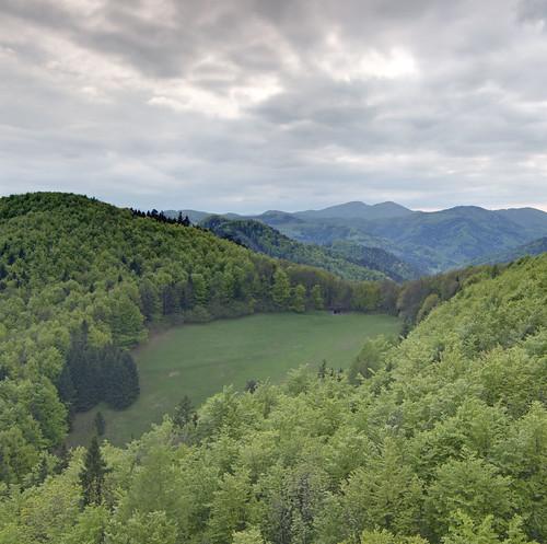 View from Araburg