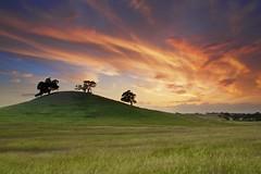Brush Strokes (ernogy) Tags: california ca sunset sky usa sun tree nature colors clouds sunrise landscape outdoors landscapes spring oak day mood hill folsom brush grasses sacramento oaks brushstrokes ernogy pwpartlycloudy