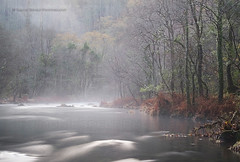 Eume river (Ramn Espelt) Tags: trees naturaleza mist nature water beauty rio misty fog forest river landscape outdoors spain agua rboles natural galicia bosque niebla bruma eume fragas tenebroso