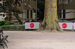 Amoerluipaard - Panthera pardus Orientalis / amurensis - Amur leopard (MrTDiddy) Tags: cat mammal zoo big kat leopard bigcat antwerpen zooantwerpen amur grote panthera pardus zoogdier orientalis amurensis grotekat amoerluipaard